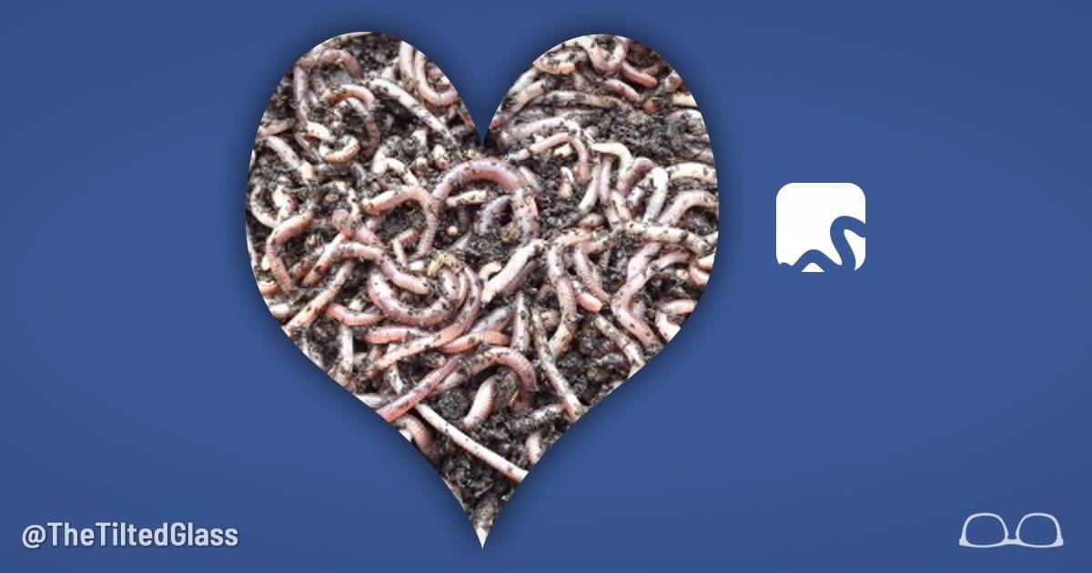 Facebook Changes Name to HeartWorm