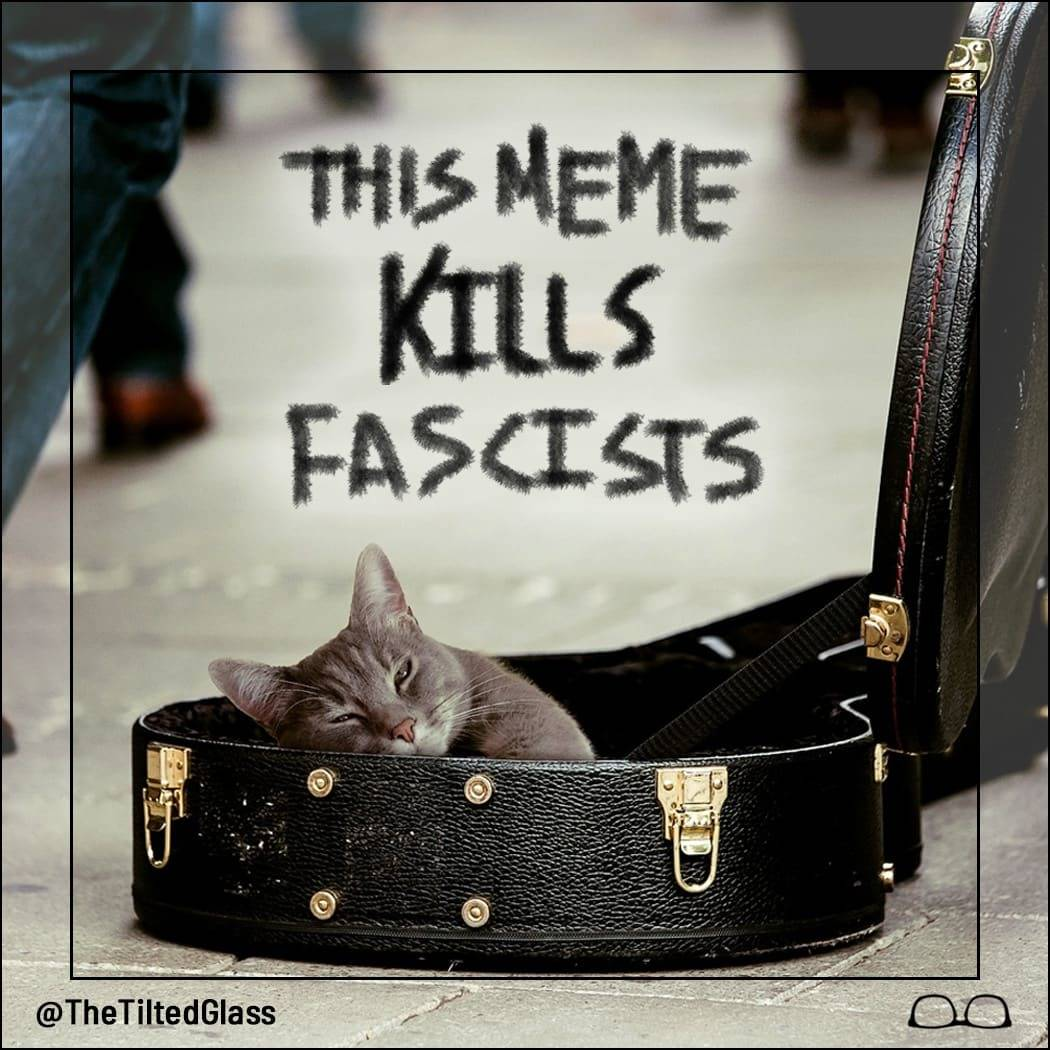This Meme Kills Fascists
