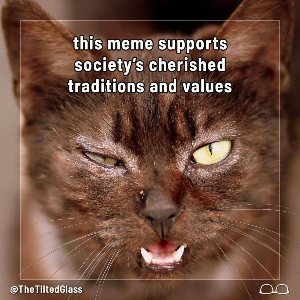 This Meme Supports Society's Cherished Traditions & Values