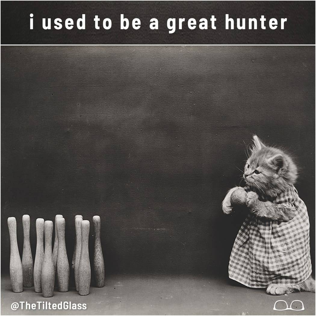 i used to be a great hunter
