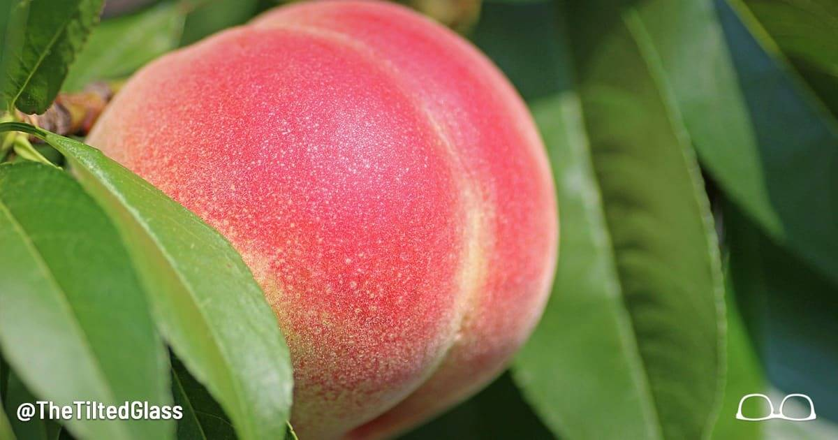 Take Our Sexy Peach Quiz to Discover Your Romantic Personality