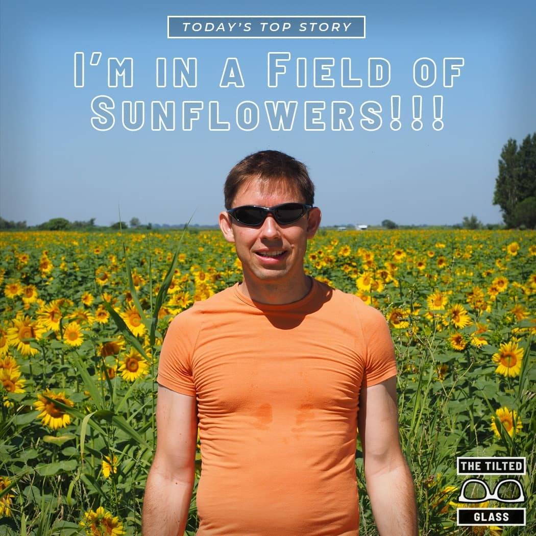 Today's Top Story: I'm in a Field of Sunflowers!!!