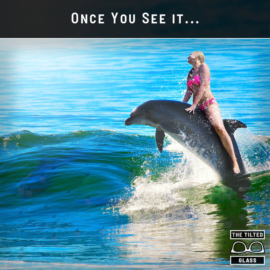 Once You See It... Special Dolphin Edition