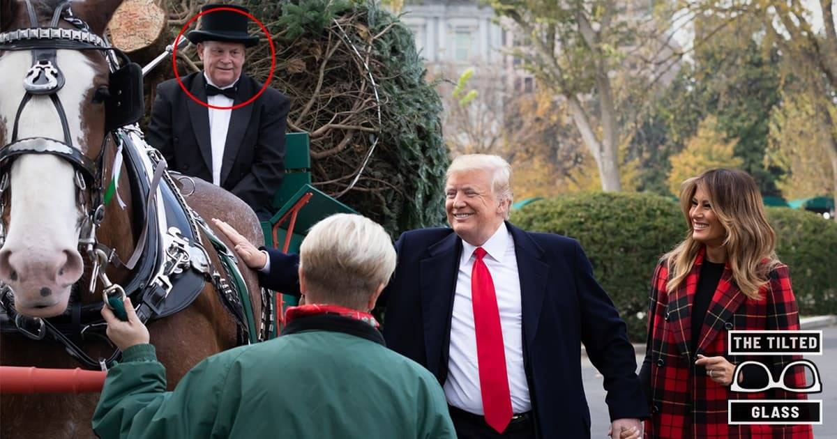 White House Horse Dies Suddenly