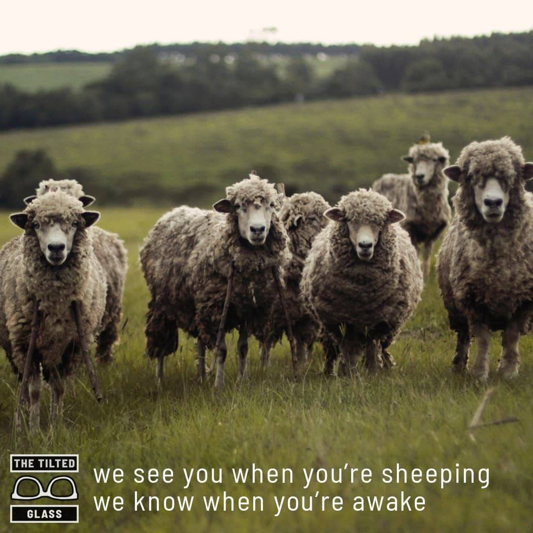 we see you when you're sheeping we know when you're awake