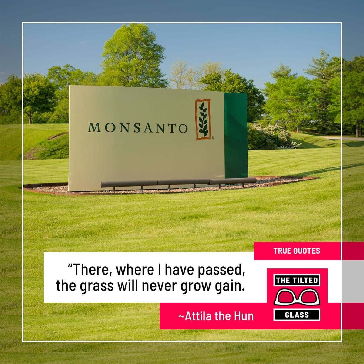 "Monsanto: ""There, where I have passed, the grass will never grow gain."""