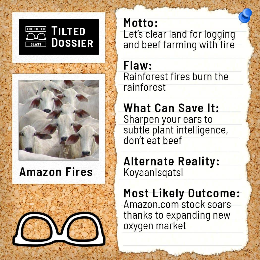What Are the Amazon Fires? A Dossier Roast