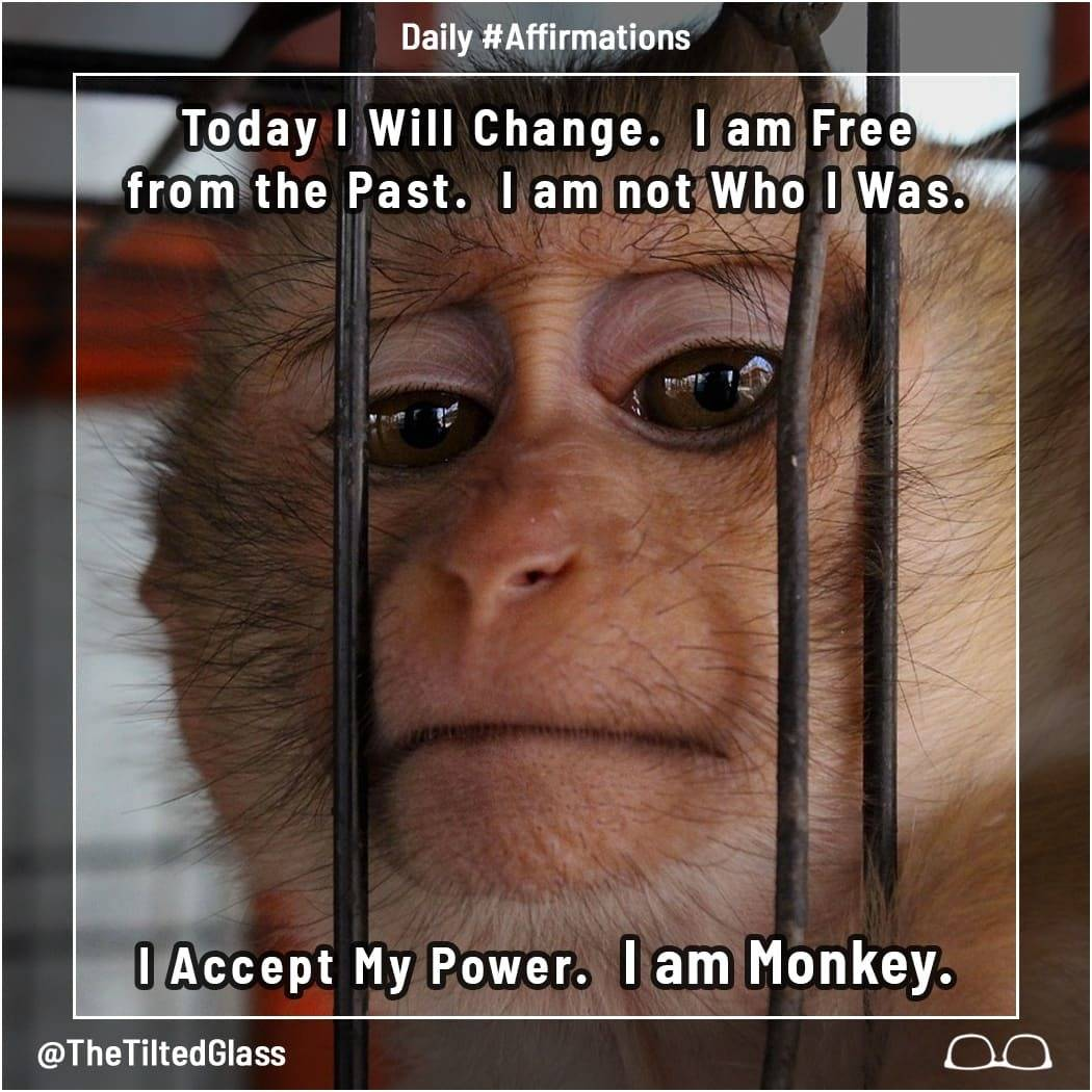 Today I Will Change.  I am Free from the Past.  I am not Who I Was.  I Accept My Power.  I am Monkey.